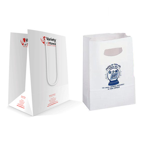 250 GSM Paper Carry Bag Printing 14X10X3-0