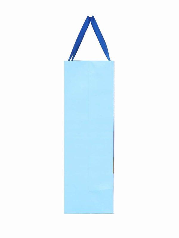 Paper Bag Baby Shower Gift