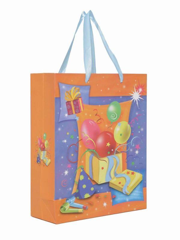 Paper Bag Birthday Return Gift India